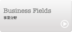 Business Fields